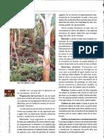 031.3.pdf