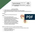 Partes Sistema Digestivo Correctas. 5