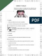 Cabeza y Cuello Documento