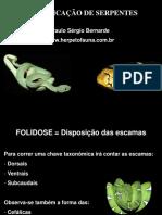IdentificacaoSerpentes.pdf
