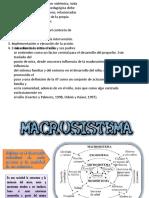 Macrosistema