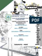 UNIVERSIDAD NACIONAL DE SAN MARTÍN 2019.docx
