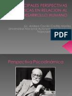 Principales perspectivas teoricas  en relacion al desarrollo humano