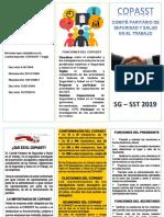 folleto capsst 2019
