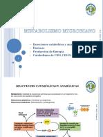 Metabolismo-microbiano.pptx