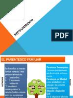 REFORZAMIENTO II.pdf