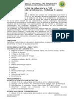Identificación de Carbohidratos, Proteínas y Lipidos Pract. de Laboratorio n 08