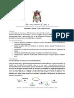 Universidad de Cuenca Sistema de Rec Fac