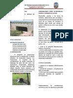 RESUMEN-EJECUTIVO-FINAL-SEGUNDO-TRABAJO-DE-INVESTIGACIÓN.pdf
