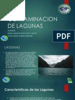 Contaminacion de Lagunass