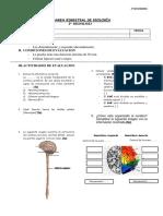 examen2ªsecbionov.pdf