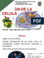 Biologia de La Celula 3-Cel Procariota
