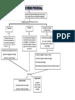 Mapa Conceptual Factores de Riesgo Psicosicial