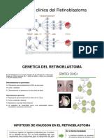Genetica Del Retinoblastomaaaa
