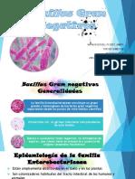 Bacillus.pptx