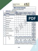 FORMATO. Professional Evaluation (Self Evaluation Matrix)- Matríz de Evaluación.....