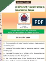Seminar Breedingforchangeinflowershape 150713163709 Lva1 App6891