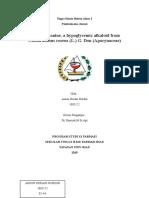 KBA 1 Alkaloid.doc