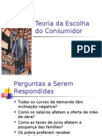 Ch21 Teoria Da Escolha Do or