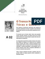 A02 Corpo Tronco PARTE A