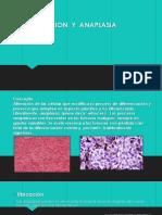 DIFERENCIACION  Y  ANAPLASIA-1.pptx
