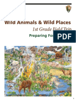 Wild Animals Wild -Places