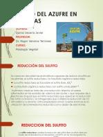 diapositivas-seminario-3