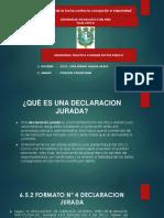 Practicas Sector Publico Copy Copy