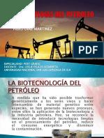Petroleo Piero