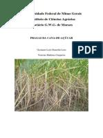 Pragas_da_cana_de_acucar.pdf