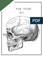 Dibujo Anatomía