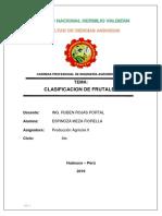 Monografia Del Pino