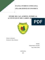 Studiu de Caz Auditul Intern Al Activității It Din Cadrul Romsilva