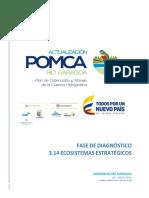 2017_rio Garagoa_fase Diagnostico Ecosis Estrateg