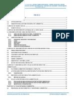 4.1. ESTUDIO DE IMPACTO AMBIENTAL OKKK.docx