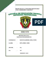 Monografia Pnp Dircote Doc