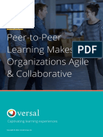 P2P Learning - Versal