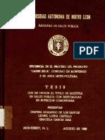 tesis carne seca.PDF