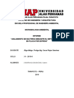 Informe de microbiologia-aislamiento de bacterias.docx