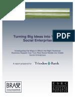 2004-Turning Big Ideas Into Viable Social Enterprise