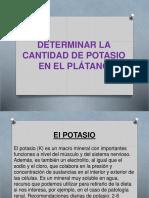 DETERMINAR LA CANTIDAD DE POTASIO EN EL PLÁTANO.pptx
