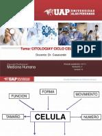 2- Citologia y Ciclo Celular Uap