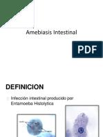 Amebiasis Intestinal Pediatria Internado
