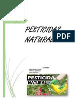 Control Natural de Plagas en Los Cultivos
