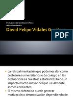 David Felipe Vidales Gualtero Retroalimentacion