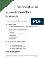 Cirugia Reconstructiva Maxilofacial