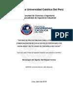 BOCANEGRA_DELAGUILA_NAT_ESTUDIO_PREFACTIBILIDAD_PRODUCCIÓN.pdf