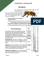 9. Die Biene