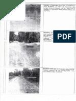 pdf154