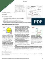metab pathways